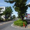 旧東海道を歩く21(茅ヶ崎[明治天皇御小休所址~本村のタブノキ])