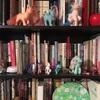 「人んちの本棚が見たい」その④