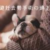 犬の避妊去勢手術の適正時期