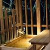 【寄稿】トラベルjp 湯河原の旅館「源泉 上野屋」