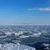 流氷求めて知床半島を北上した!ついにそこで見た光景とは・・・