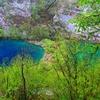 プリトヴィッツェ湖国立公園(クロアチア)