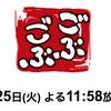 【新相棒は毎回変わる】ダウンタウン・浜田雅功の「ごぶごぶ」が復活!