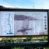 北上川の舟運
