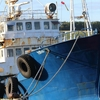 花咲港のロシア船