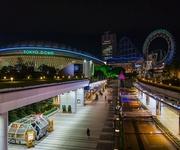 プレミア12 侍ジャパン世界一に、韓国人から「ある指摘」の声が