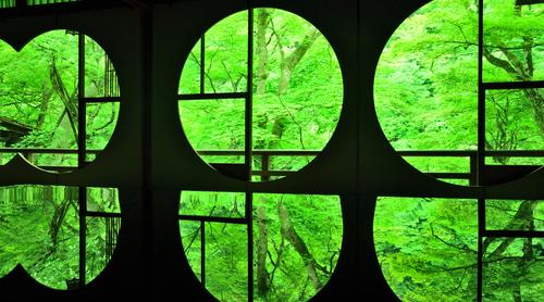 雨の日のしっとりした京都の楽しみ方! 美術館・ギャラリー・重要文化財の邸宅…注目の観光スポット3選