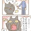 第37話「ちゅ~るの魔力」猫漫画