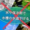 注意!夏場の水温対策『氷や保冷剤で水槽の水温下げる』は危険です!