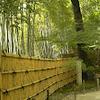 京都行きたい