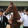 指名馬情報:牝馬第8位