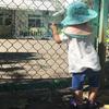 保育園開始!1年待機児童になったメリットとデメリット(の解決方法)!