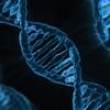 未知の生命種のメラネシア部族の遺伝子DNA