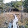 岡崎市の小呂湿地