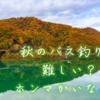 【難しい季節?】秋のバス釣りで釣れない人にありがちな3つの思い込み。