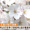 名古屋・横浜・佐賀・松山で桜が満開に!名古屋は統計開始以来で最速タイ記録!!