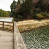 丑ヶ池(千葉県東金)