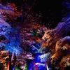 下鴨神社「光の祭」に行ってきたよ。