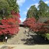 2019年 紅葉編 一回目の京都