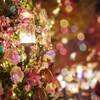 2020クリスマス 主人へのプレゼントにオールバーズのスニーカーを・・・