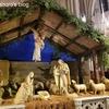 ニューヨーカーのクリスマス当日の過ごし方/日本との違いって何?【海外生活・日常】