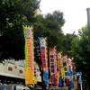 大相撲 渋谷青山学院場所