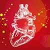 心不全とは疾患名ではない?|心リハを学ぶうえで重要なこと