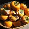 実りの秋!今年も柿が沢山収穫できました(葉の裏に潜む虫も発見!)