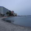 浜ちゃん日記  夕暮れの弁天島海浜公園を訪れて