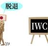 6月30日に正式にIWC脱退した日本。今後の影響は?クジラを食べる人はいるの?