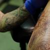 タトゥーを入れてしまう人の心理