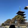 終い弘法さん #kyoto  #東寺 #弘法市