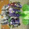 LEOそふび坊や / 偶像怪獣 イドラ[1期/第6回ドキドキ大阪ソフビ万博]Idol monster