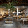 旅人のカフェ「Chus(チャウス)」~カフェとバーを兼ね備えた黒磯の旅宿~