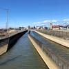 葛西用水を歩く 大落古利根川起点から遡って会の川合流まで