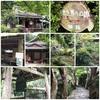 京都大原 寂光院🌲🌳日本の原風景 大原の里🌱🌿☘️龍谷山 本願寺(西本願寺)🍀🌾