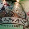 企画展『話題になった生きものたち 〜なつかしくて新鮮!!〜』(2016.12-2017.4)