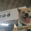 ふるさと祭り2017in東京ドームに行ってきた話
