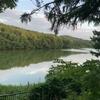 西岡公園でホタルを見てきました