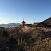 【京都府】で訪れたい名所3つ:清水寺と二条城と伏見稲荷大社