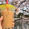 桜散歩とタピオカドリンク、土曜恒例のたい焼きも。