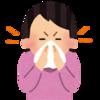 ヒノキ花粉が飛んでいるらしい