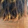 髪ダメージの危険性が高いお客さん?