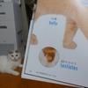 猫+英語の最強本をいただいてしまいました♡