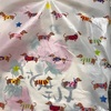 【ショートネタ】お土産袋