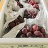 山梨県 市川三郷町からふるさと納税のお礼品が到着: サニールージュ(タネなし)約2kg