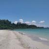 珊瑚と貝殻のビーチ