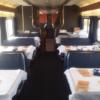 (動画あり)アメリカの大絶景を眺めよう!〜Amtrak鉄道旅〜 part. 1