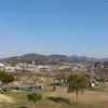 石川河川公園は桜の季節に子供達と行くのが最高です!