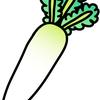 食品学実験(11)食品中のビタミンC インドフェノール滴定法